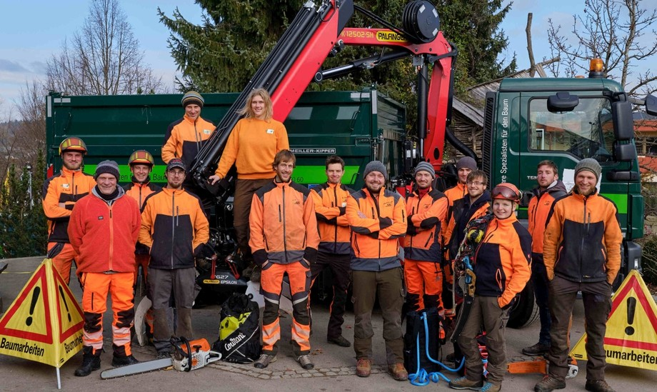 Das Baumpflegeteam