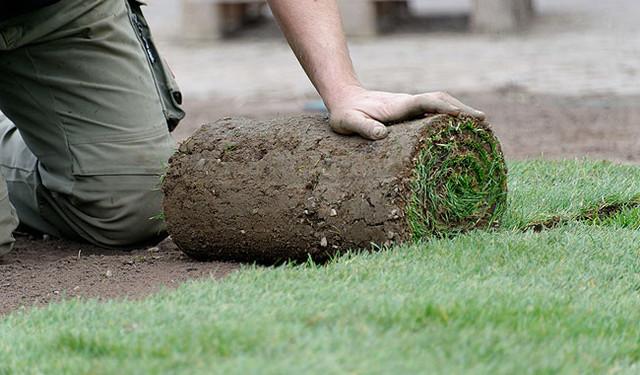 Rasen und Gartenpflege