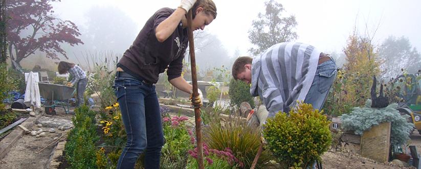 Praktikum Gartenbau