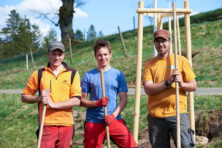 Baumpflanzung ist Teamarbeit