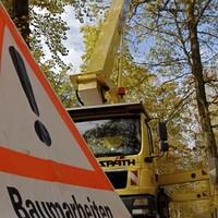 Baumpflege-05