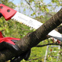 Obstbaumschnitt-3