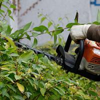 Gartenpflege-04